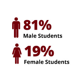 Infographic: 81% Male Students, 19% Female Students