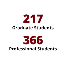 Infographic: 217 Graduate Students, 366 Professional Students