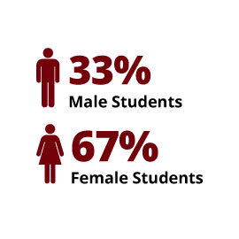 Infographic: 33% Male Students, 67% Female Students