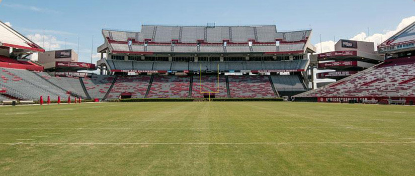 Williams-Brice Stadium Field