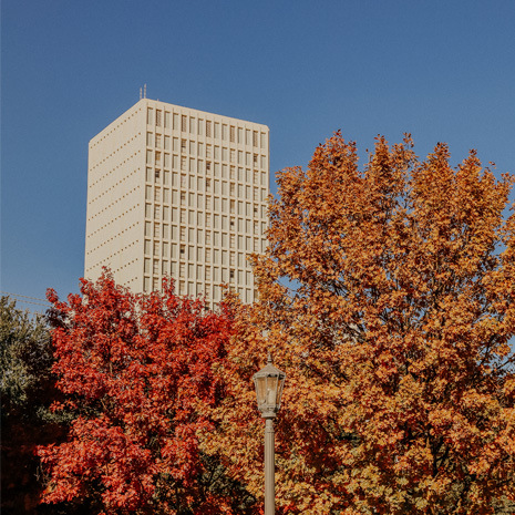 South Tower view from East Quad courtyard in the fall