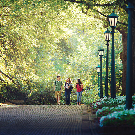 students walking on the historic horseshoe