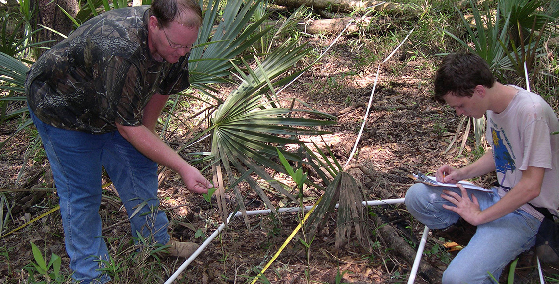 Dr. Eran Kilpatrick conducts research in the Walterboro Wildlife Sanctuary.