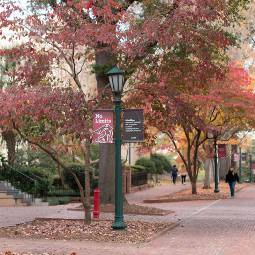 Brick walkways on the Horseshoe at the USC Columbia campus, showing fall colors on the trees and students walking