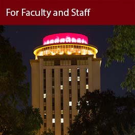 For Faculty and Staff (Capstone lights)