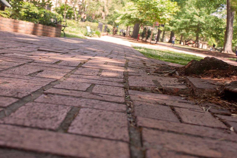 Pathway of uneven bricks on the Historic Horseshoe.