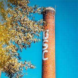 烟囱与信件USC在它的树肢上在蓝天前面构成。