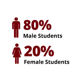 Infographic: 80% Male Students, 20% Female Students