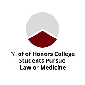 Infographic: 1/3 of Honors College students pursue law or medicine
