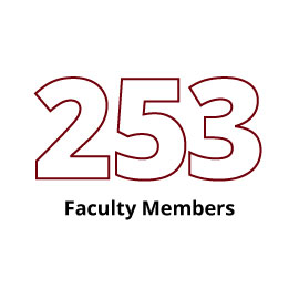 Infographic: 253 Faculty Members