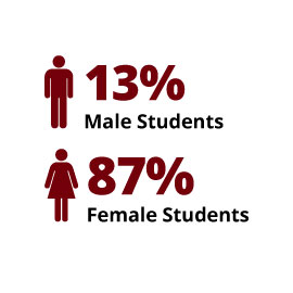 Infographic:  13% Male Students, 87% Female Students