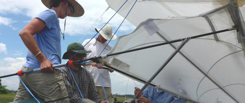 Researchers attach interments to a kite.