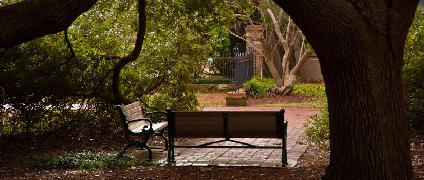 Benches on the Horseshoe at the University of South Carolina, Columbia.
