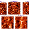 Scanning tunneling microscopy images for five different metal particles deposited on rutile TiO<sub&gt;2</sub&gt;(110), with the average cluster heights shown above each image.  The particle size decreases with increasing metal-titania interaction and metal-oxygen bond strengths; images are 1000Å x 1000Å.