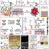 Summary of organometallic and metallopolymers research.