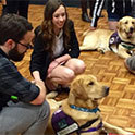 USC students use pets, PR to make military veterans feel welcome