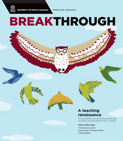 "Cover of Breakthrough magazine, featuring an illustration of an owl leading a flock of other birds. Text below reads ""a teaching renaissance"