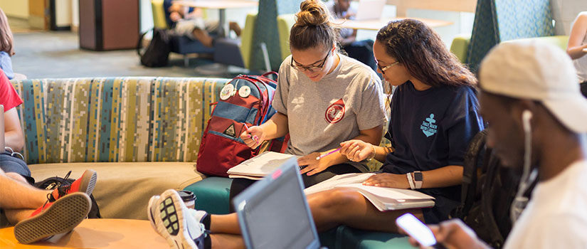 two female students studying