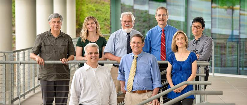 Faculty Fellows: Gothe, Miller, Gardner, Filaseta, Moss, Goode, Gadala-Maria, Buchan