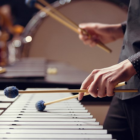hands playing an idiaphone with mallets