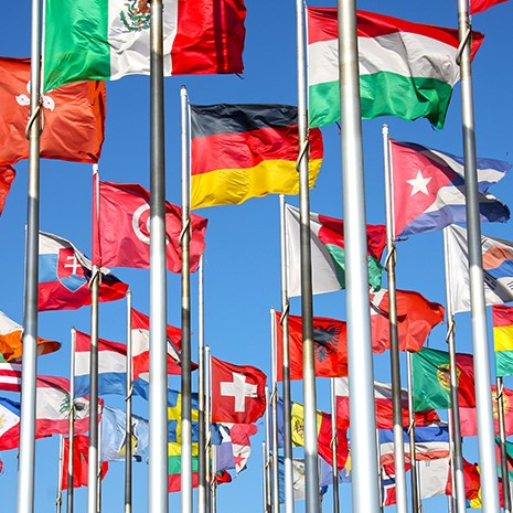 world flags unfurled in the wind