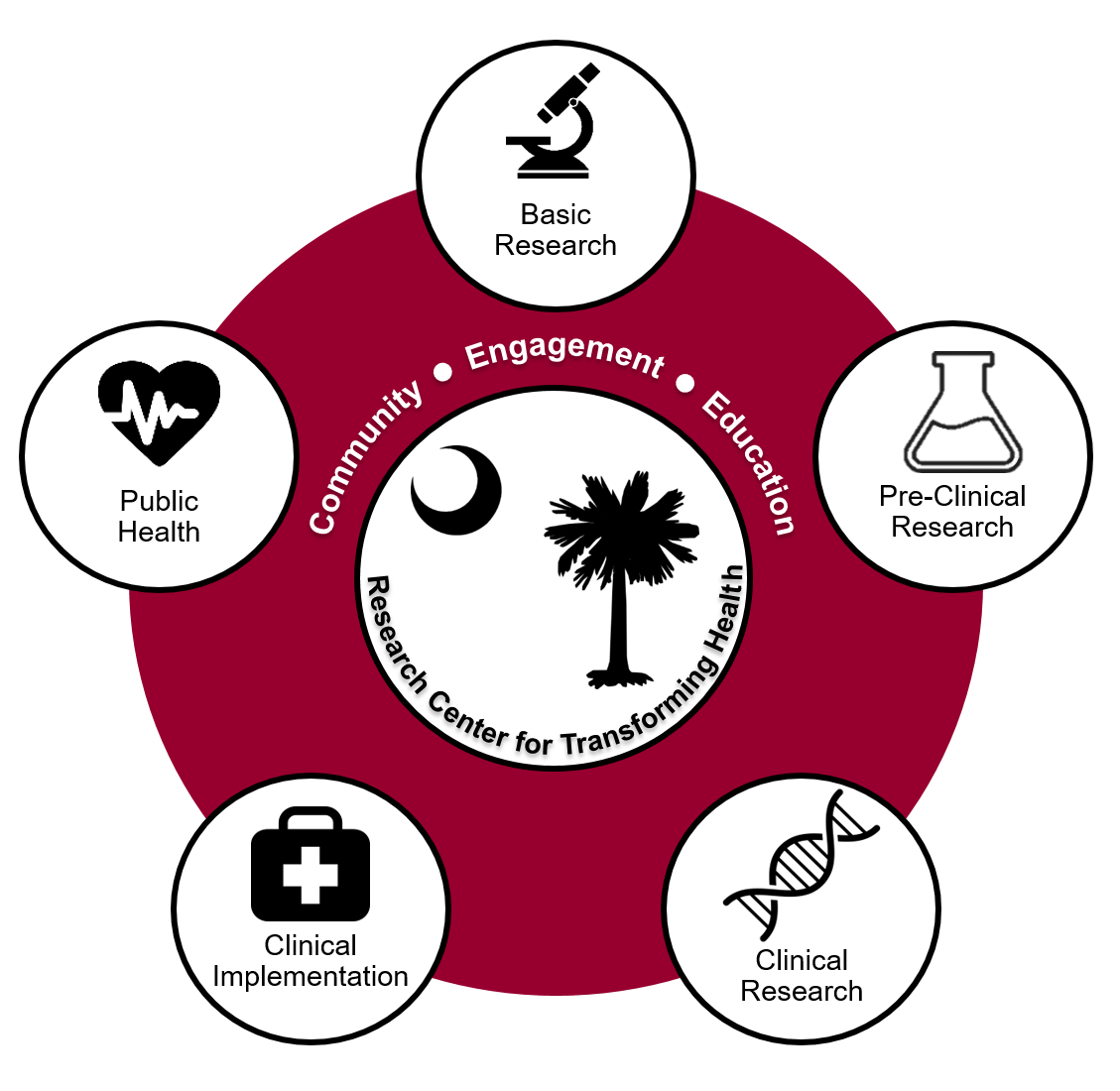 The Research Center for Transforming Health is dedicated to building a path to better health in South Carolina and beyond  by strengthening people, programs and infrastructure across the research continuum.