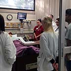 UofSC launches bold health sciences initiative