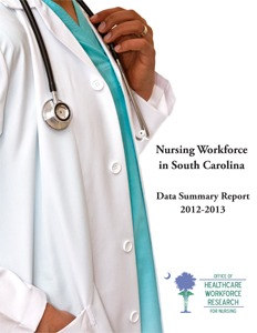 2013 Report Cover