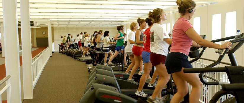 Row of people working out on cardio equipment