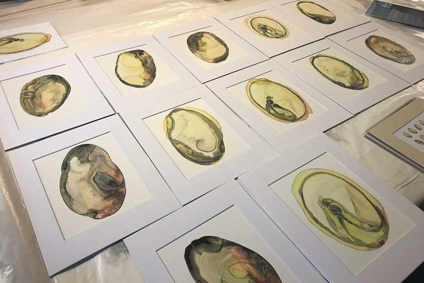 Seed vault art drawings