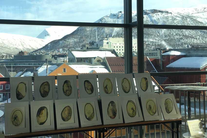 Seed vault art display drawings