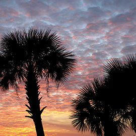 South Carolina Sunset