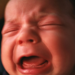infant crying